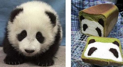Pão com carinha de panda